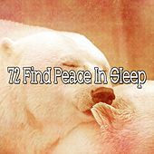 72 Find Peace in Sleep de White Noise Babies