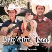 Os Meninos da Viola de João Vitor