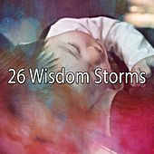 26 Wisdom Storms by Rain Sounds and White Noise