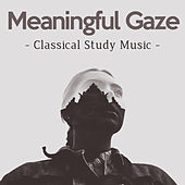 Meaningful Gaze by Classical Study Music (1)