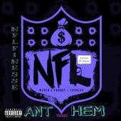 NFL Anthem by NFL Finesse