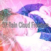 37 Rain Cloud Freedom by Rain Sounds and White Noise