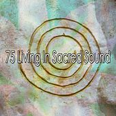 75 Living In Sacred Sound by Yoga Workout Music (1)