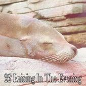 22 Raining in the Evening de Thunderstorm Sleep