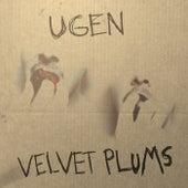 Velvet Plums von Ugen