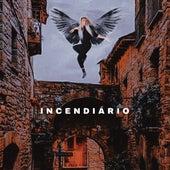 Incendiário by Rodrigo Ruchell