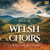 Best of Welsh Choirs de Various Artists