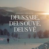 Deus Sabe, Deus Ouve, Deus Vê (Playback) de Leonardo Gonçalves