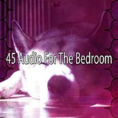 45 Audio for the Bedroom by Nature Sounds Nature Music (1)