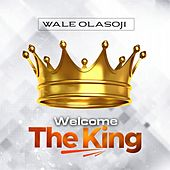 Welcome the King by Wale Olasoji