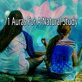 71 Auras for a Natural Study de Massage Tribe