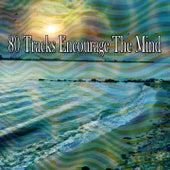 80 Tracks Encourage the Mind de Study Concentration