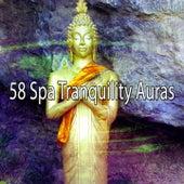 58 Spa Tranquility Auras de Meditación Música Ambiente