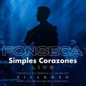 Simples Corazones Con La Filarmed de Fonseca