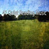 41 Quiet Reading Music von Massage Therapy Music