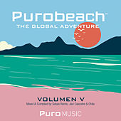 Purobeach Vol. Cinco The Global Adventure - EP de Various Artists
