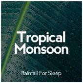 Tropical Monsoon by Rainfall For Sleep