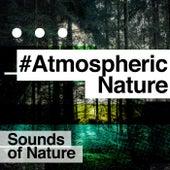 #AtmosphericNature de Sounds Of Nature