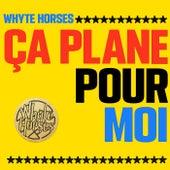 Ça Plane Pour Moi by Whyte Horses