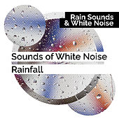 Sounds of White Noise Rainfall by Rain Sounds and White Noise