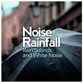 Noise Rainfall by Rain Sounds and White Noise