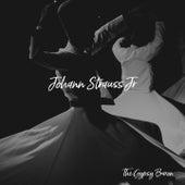 The Gypsy Baron de Johann Strauss, Jr.