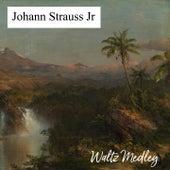 Waltz Medley de Johann Strauss, Jr.