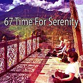 67 Time for Serenity de Nature Sounds Artists