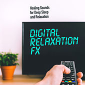 Digital Relaxation FX de Healing Sounds for Deep Sleep and Relaxation