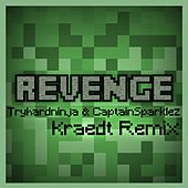 Revenge (Kraedt Remix) by TryHardNinja
