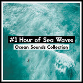 #1 Hour of Sea Waves de Ocean Sounds Collection (1)