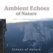Ambient Echoes of Nature by Echoes of Nature