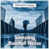 Sleeping Rainfall Noise by Various Artists