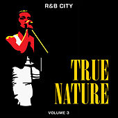 R&B City: True Nature, Vol. 3 de Various Artists
