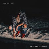 How You Feel? de Exodus