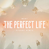 The Perfect Life (Pyerre Remix) by Moby
