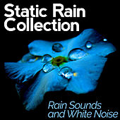 Static Rain Collection by Rain Sounds and White Noise