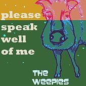 Please Speak Well Of Me by The Weepies