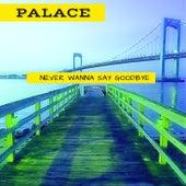 Never Wanna Say Goodbye de Palace