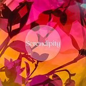 Serendipity by Yoga Workout Music (1)
