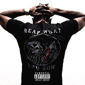 Reap What You Sow by Philly Swain