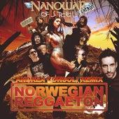 Norwegian Reggaeton (Andrea Consoli Remix) by Nanowar of Steel