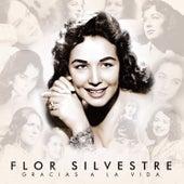 Gracias a la Vida by Flor Silvestre