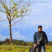 Somewhere Only We Know (Cover) de Willian Amorim