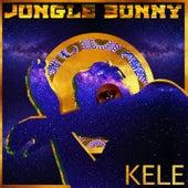 Jungle Bunny by Kele