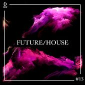 Future/House #13 by Various Artists