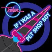 If I Was A Pet Shop Boy by Eden