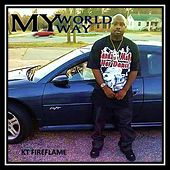 My World My Way by KT Fireflame