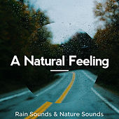 A Natural Feeling by Rain Sounds