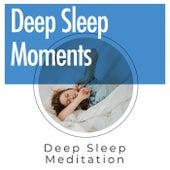 Deep Sleep Moments by Deep Sleep Meditation